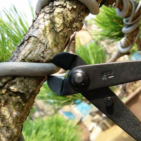 alicate-bonsai-herramienta-china-barata