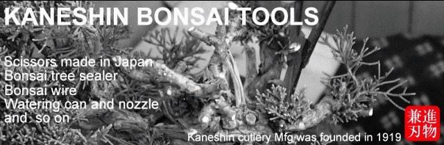 herramientas bonsai  japonesas kaneshin tools
