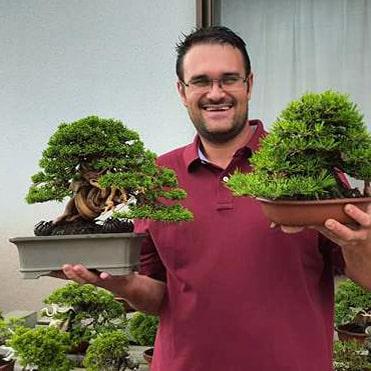 Alexandre Escudero bonsai.