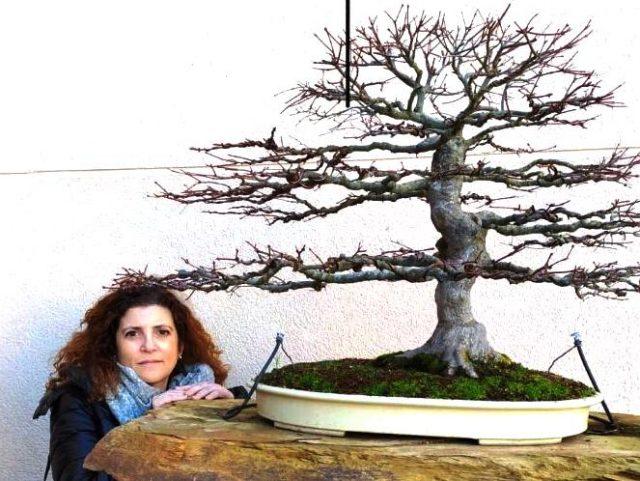 Eva con uno de sus arces palmatum