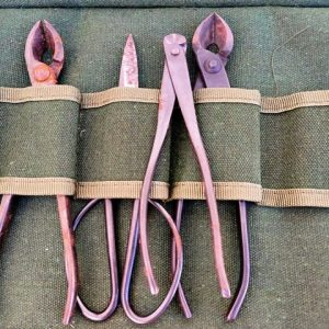 herramientas para bonsai oxidadas